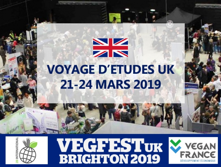 2019 21 Uk 24 Vegan France Au Mars D'études Brighton Voyages lFc3T1JK